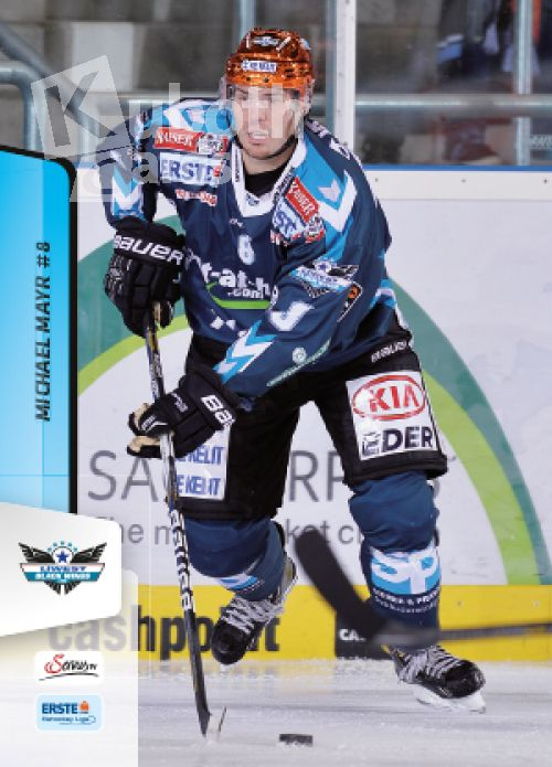 EBEL 2013-14 Citypress - No 238 - Michael Mayr