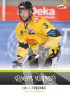 DEL 2013-14 CityPress Seasons Surprises - No SS08 - David Fischer